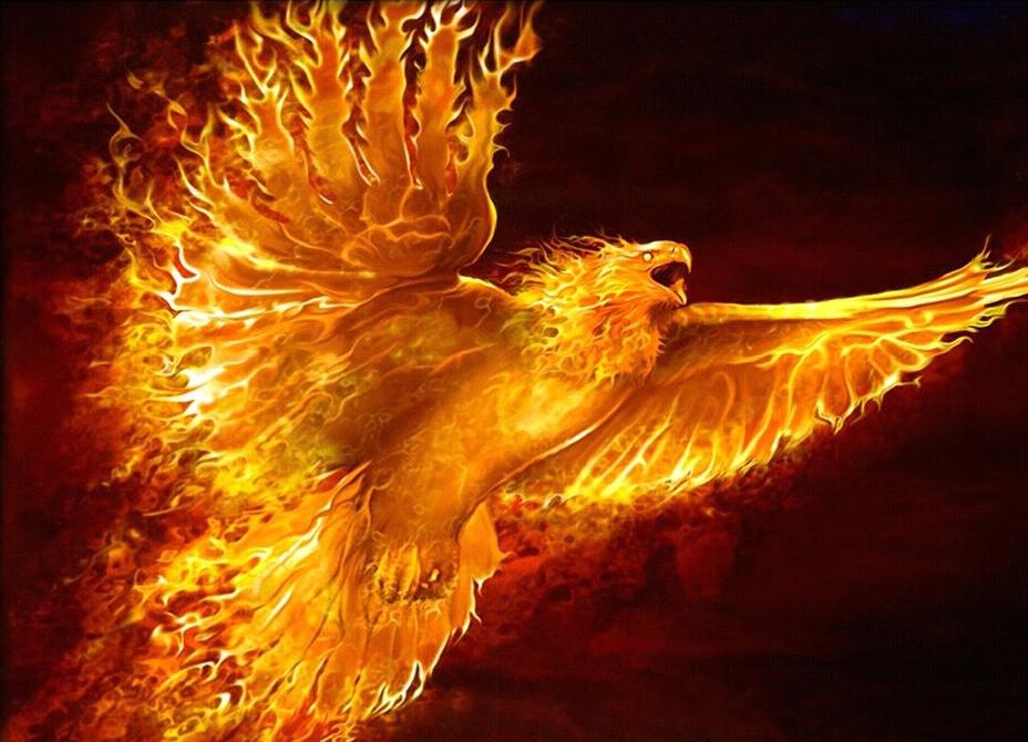 Phoenix physiology superpower wiki fandom powered by wikia - Photo de phenix ...