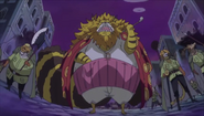 The Guardians (One Piece)