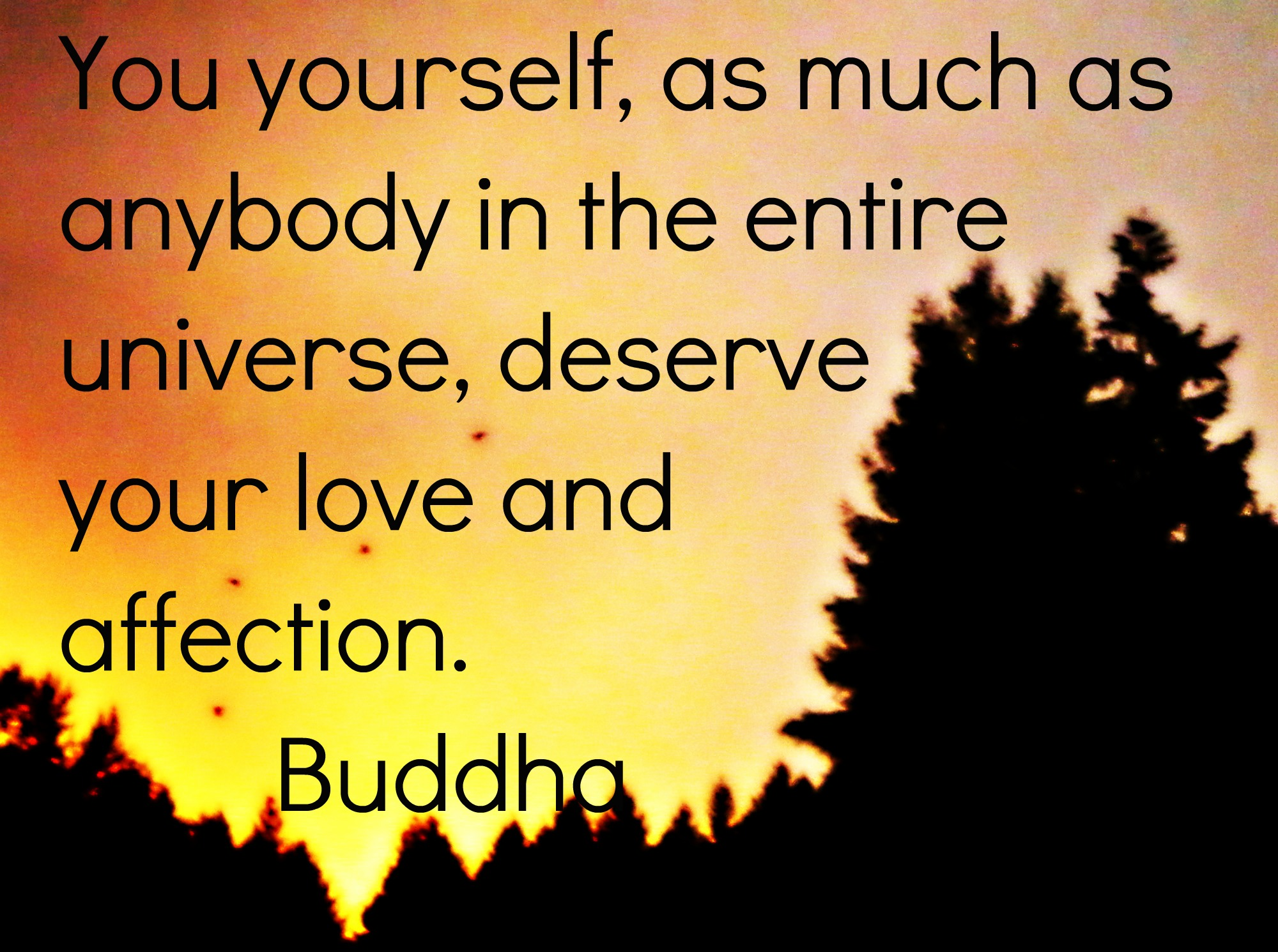 Buddha Quotes About Love Image  Buddha Quote 5  Superpower Wiki  Fandom Poweredwikia