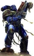 Space Marine Armor