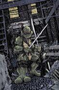 Leonardo (IDW Teenage Mutant Ninaja Turtles) profile
