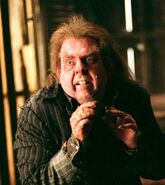 Peter Pettigrew (Harry Potter)