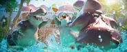Hippos-pool