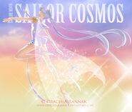 Sailor Cosmos 1