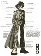 Cyborg 009 anatomy