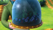 Crown of the Gnomes