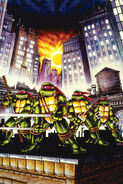 Teenage Mutant Ninja Turtles (Kevin Eastman's art)