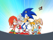 Sonic and his friends (Sonic X)