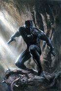 Black Panther Habit