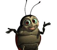 Francisbugslife