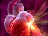Cardiology Manipulation