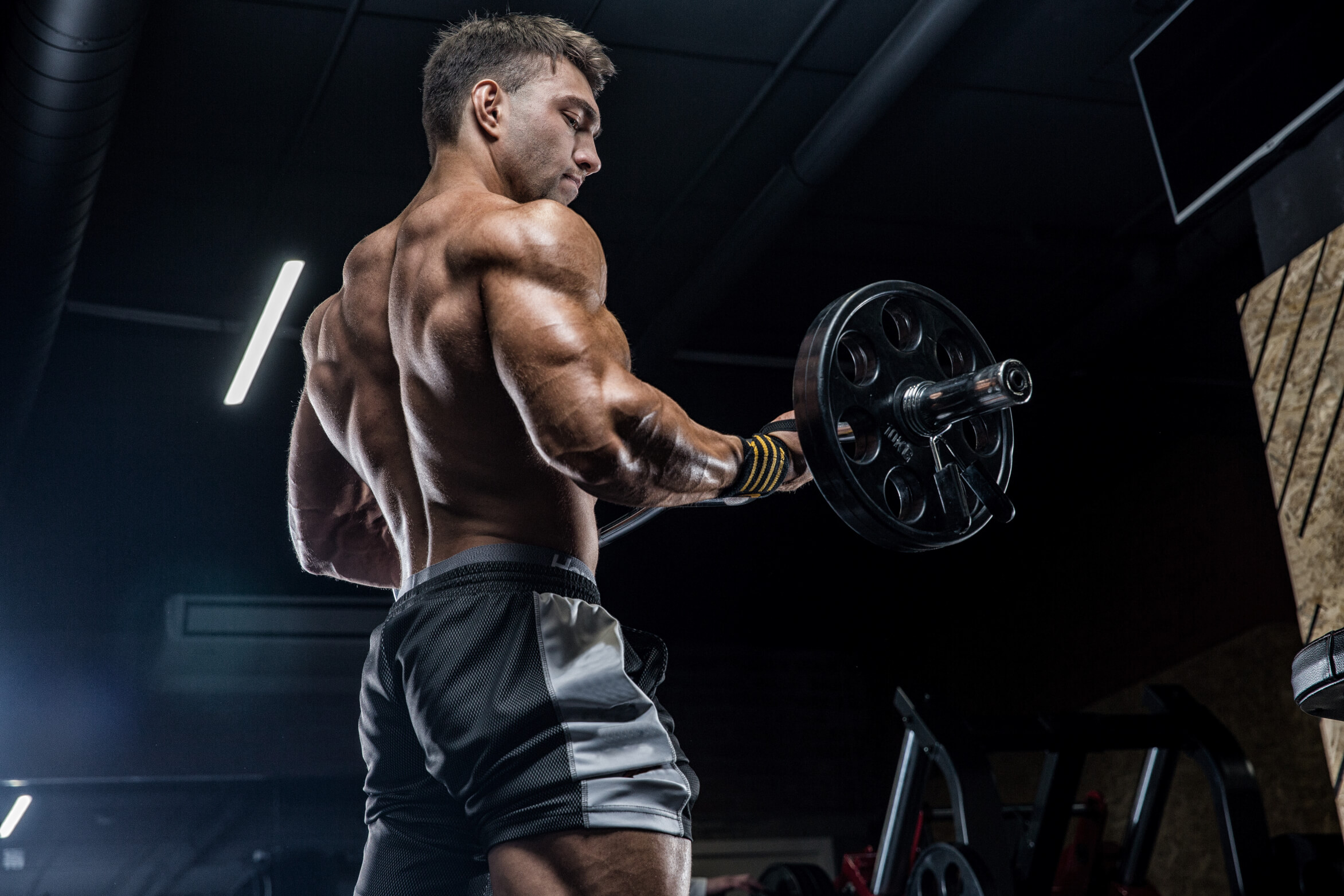 muscle growth science