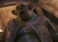 Harrypottertroll