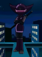 Lady Ninja profile