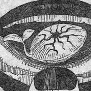 Darwinian Seed
