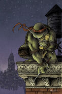 Rapahel (IDW Teenage Mutant Ninaja Turtles) profile