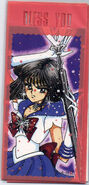 Sailormoon Thin Card