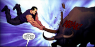 Punisher vs Bull