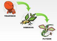 Trapinch evolution