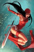 Elektra the Crazy Ninja Lady of Marvel Comics
