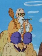 Master Roshi Anime