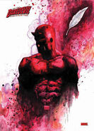 Daredevil-marvel-comics-14713833-307-425