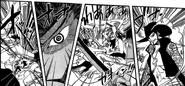 Dracule Mihawk (One Piece) Eyesight
