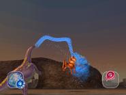 Aqua Whip