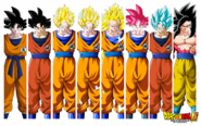 The Various Forms of Son Goku