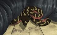 Soul Eater Medusa Snake