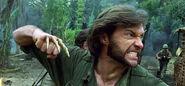 Wolverine-bone-claws