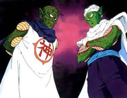 Piccolo and Kami Life Link