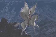 Clash Pegasus