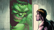 Bruce and Hulk (Marvel Comics)