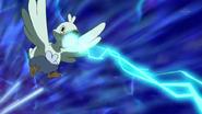 Ducklett-Ice-Beam