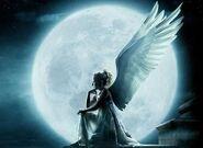 Angela wings
