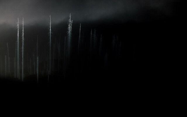 File:Unnamed Darkness.jpg