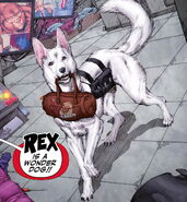 Rex the Wonder Dog