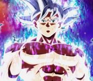 Goku Mastered Instinct