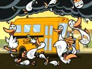 Dreamgoat FOP Raining Ducks