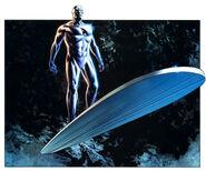Surfer's board