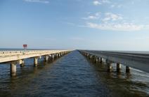 Puente del PNI