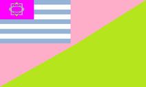 Bandera del PNI