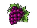 File:Redgrapes.png
