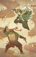 MMPR TMNT Issue 1 Legend variant 1