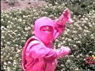 Ninja Rose