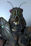 Cicada Nezire Cos2