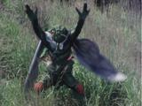 Cicada Evo
