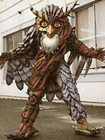 Owl NezireFan Feed