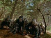 Lost-Ninjas
